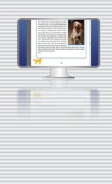 Illustration of e-book on computer screen